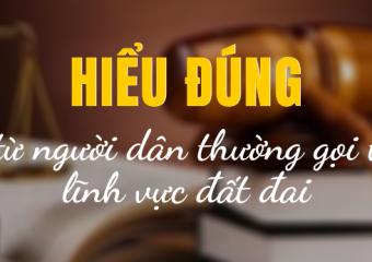 tu-thuong-goi-trong-dat-dai