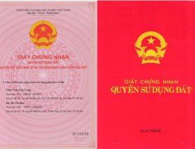 dat-su-dung-tu-nhung-nam-90
