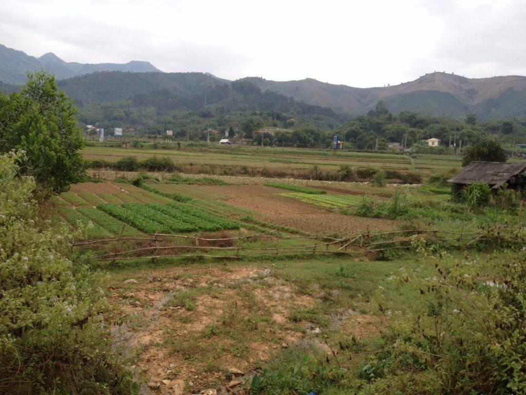 chuyen-dat-nong-nghiep-len-dat-tho