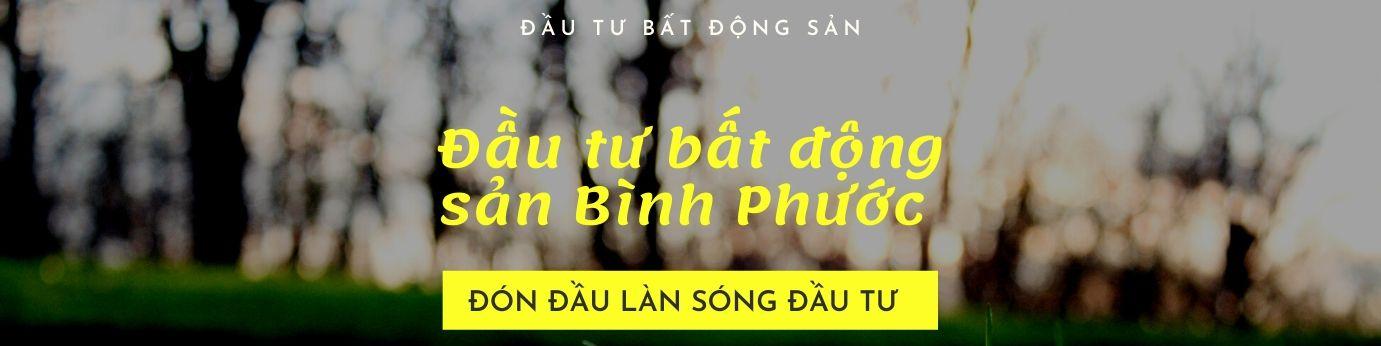 dau-tu-bat-dong-san-binh-phuoc