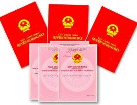 quy-dinh-moi-nguoi-su-dung-dat-can-biet-tu-01/9/2021